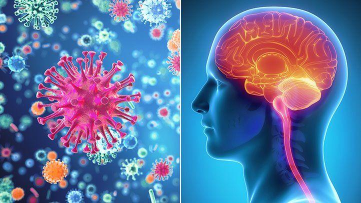 Agyhártyagyulladás (meningitis) tünetei – Jelek, amikre érdemes odafigyelnie!
